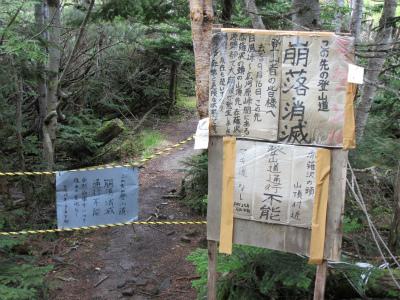 南アHike2014 (3).jpg