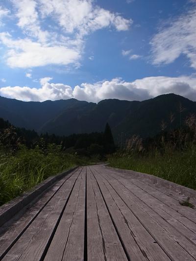 Tanukiko Camp 20120901 012.jpg