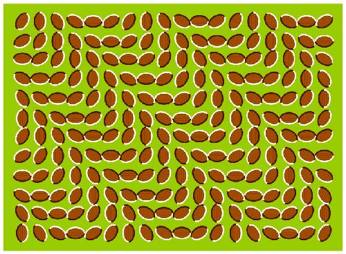 stress-level-test-3rd-image.jpg
