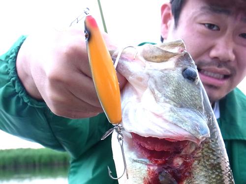 Fishing20150604 003.jpg