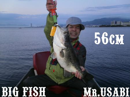 Mr.USABI.jpg