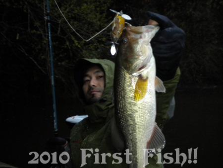 fish2010(1).jpg