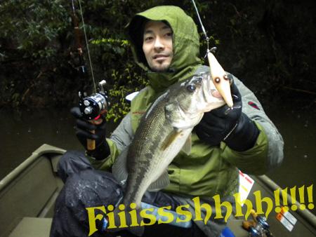 fish2010(2).jpg