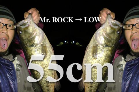 rock-low412.jpg